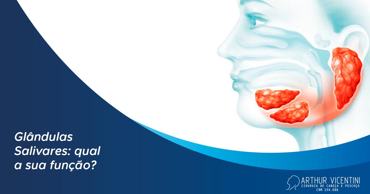 A imagem mostra uma ilustração da cabeça de uma mulher, de lado, e as glândulas salivares em destaque.