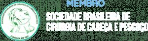 Membro Sociedade Brasileira de Cirurgia de Cabeça e Pescoço | Dr. Arthur Vicentini