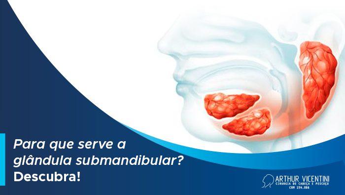 Para Que Serve A Glandula Submandibular Descubra Dr Arthur Blog 1
